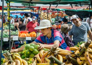 A youth works on a fruit stall at the Zapote Farmer's Market, a popular weekly event in the nation's capital San Jose.